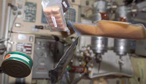 NASA испытает бактерии, как универсальный космический ресурс