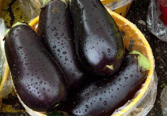 Плоды селекции или о том, как фрукты и овощи выглядели до знакомства с человеком [фото] - баклажан