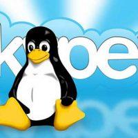 Скайп для Linux: Microsoft представила v.1.6 наконец-то