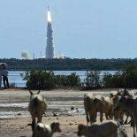 104 спутника одновременно вывела на орбиту индийская РН Polar [видео]