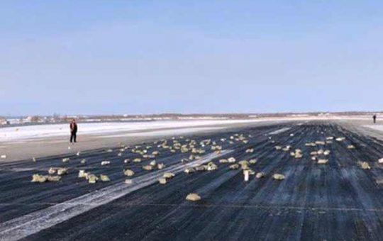 Больше 3 тонн золота вывалилось из грузового АН-12 в Якутске [видео]