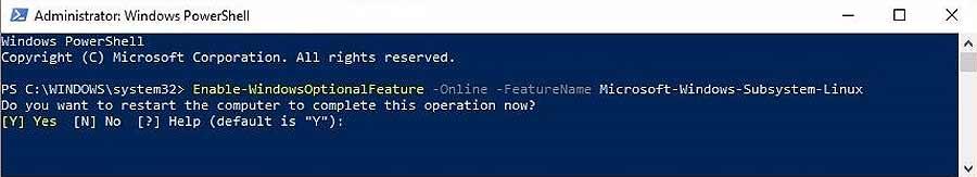 WSL: как установить и настроить субсистемуKali Linux в Windows 10 - #Windows10