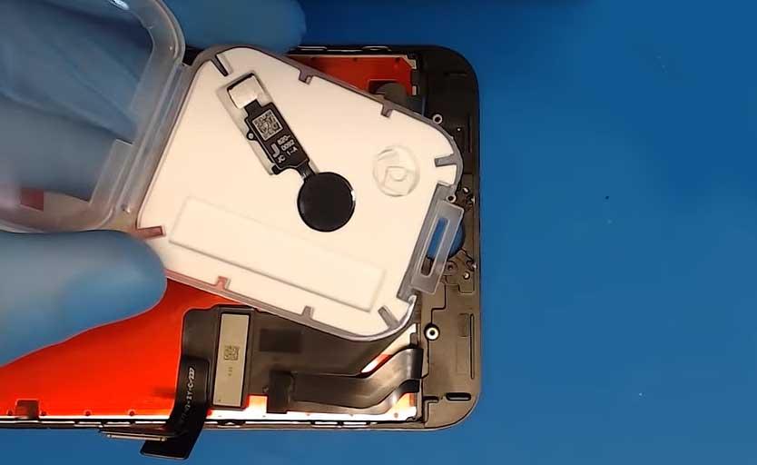Кнопка Home в моделях iPhone 7/7+ и 8/8+: заменить её теперь можно дешевле