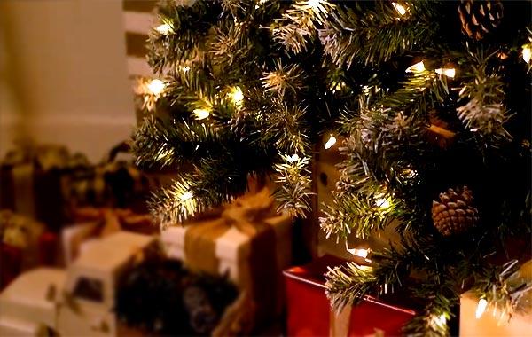 Классная искусственная ёлка на Новый год: ель, сосна или пихта?