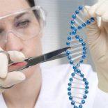 Ученые показали, как генная инженерия способна устранять болезни [видео]