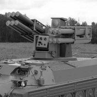«Птицелов» для ВДВ вооружат боевым модулем «Сосны»? [видео]