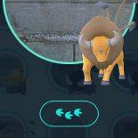 #PokemonGo: с новым трекером жить стало лучше, жить стало веселее