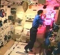 Китай приступил к реализации программы по выращиванию человеческих органов на орбите