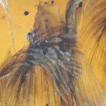Ученые показали обитателя Земли, застывшего в янтаре 99 миллионов лет назад [фото]