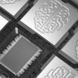 IBM и ВВС США занялись созданием нейроморфного компьютера