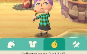 Жуки, бабочки, рыбки и т.д. – что и как собирать в Animal Crossing: Pocket Camp