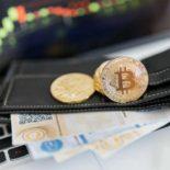 Кошельки для криптовалюты: какие они бывают