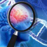 Обучение значительно снижает риск возникновения болезни Альцгеймера