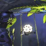 Как фармить юниты на Жужжащих яйцах вNo Man's Sky NEXT [видео]