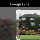 Поиск картинок через Google Объектив в Chrome: как включить