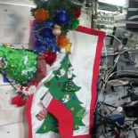 Новогодняя ёлка на борту МКС и поздравление с орбиты [видео]