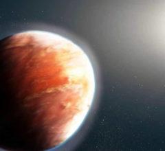 Звезда-капля HD74423 и красный карлик: гравитация может…