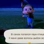 Первый миллион диней в Animal Crossing New Horizons — фармим на пауках!
