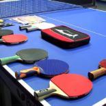 Интересные и разнообразные факты из истории настольного тенниса