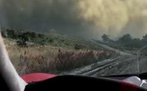 Forza Horizon 5: на чем будем гонять — список моделей [видео]