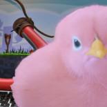 Angry Birds Stella: всегда три звезды и море фана