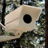 CCTV камеры уличного видеонаблюдения: как разместить правильно