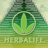 Эксперт: Herbalife — это финансовая пирамида