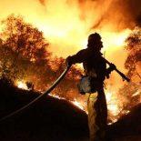 NOAA показало калифорнийские пожары из космоса [видео]